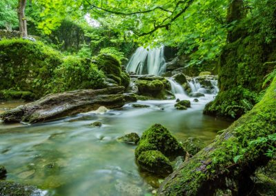 beautiful-cascade-environment-460621