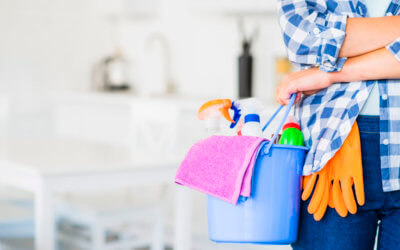 Home Cleaning Training for staring a Cleaning Business